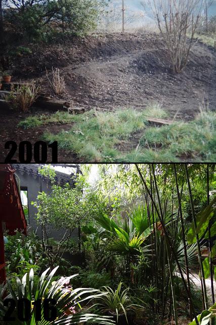 (07) Le jardin de Bésignoles - Privas - Page 3 Montage%2B6