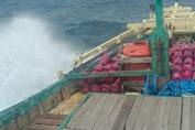 BMKG: Waspada Gelombang Tinggi 1.5 - 2.5 Meter di Perairan Teluk Bone