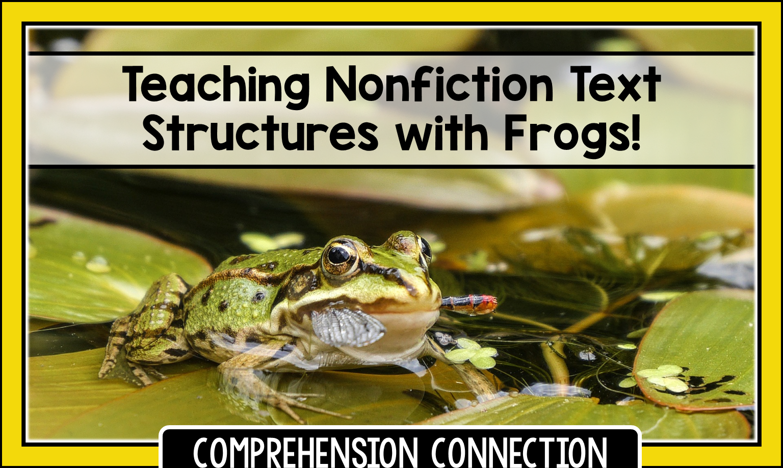 Do your kids struggle with nonfiction text structures? The book, Frogs! by National Geographic is a great choice for teaching nonfiction text structures. Check out this post for teaching points and a lot more.