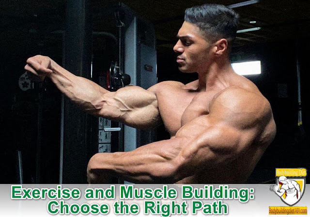 Exercise and Muscle Building: Choose the Right Path