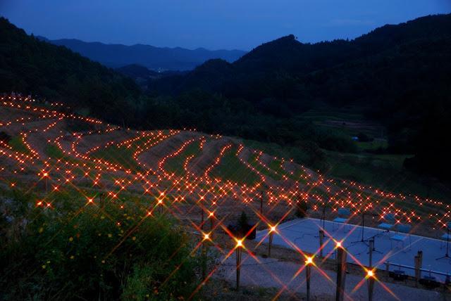 Light-up Event at Rice Field, Senmaida, Kamogawa City, Chiba Pref.