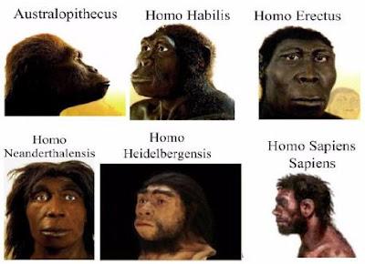 Origen del ser humano