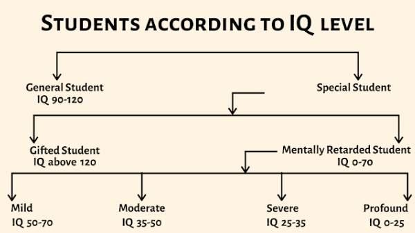 IQ Levels