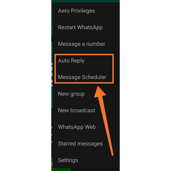WhatsApp Aero Beta