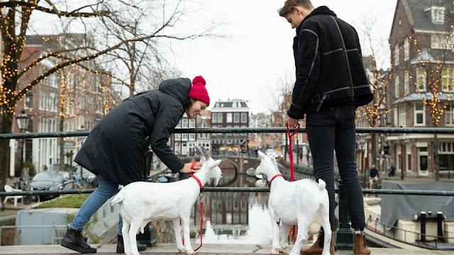 """Thành phố Amsterdam, Hà Lan """"phát chồng"""" cho nữ du khách 7"""