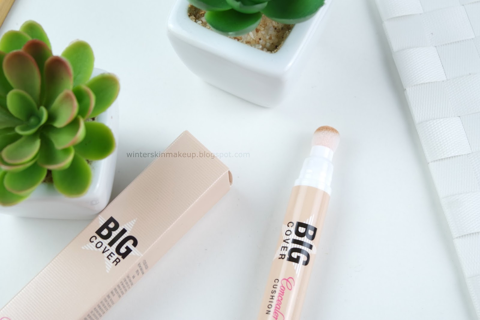 Etude House Big Cover Cushion Concealer