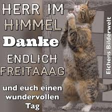 5 Lustige Bilder Freitag X Claudia Schiffer