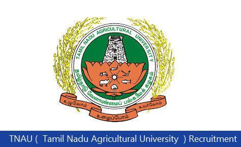 TNAU (  Tamil Nadu Agricultural University  ) Recruitment