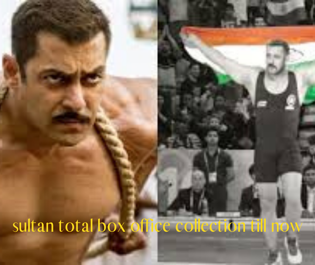 sultan total box office collection till now
