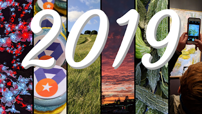 2019 banner with photos