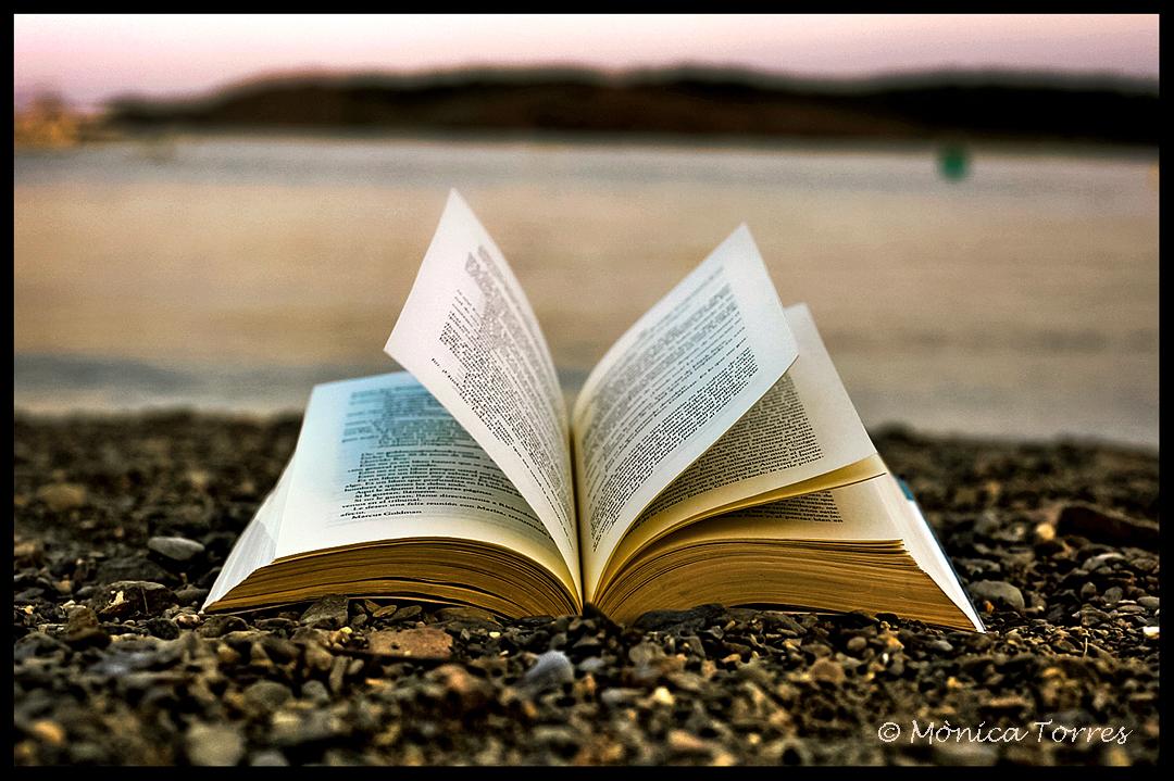 El Fomento De La Lectura Una Batalla Perdida: DESINTERÉS POR LA LECTURA EN LOS JÓVENES