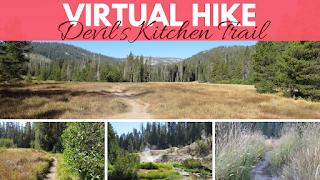 vaughn the road again virtual hiking videos for treadmill northern california nature