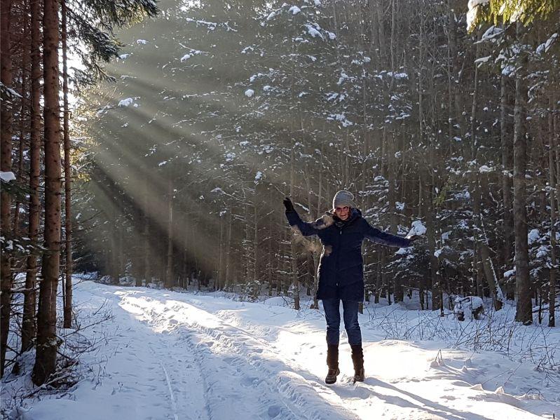 Winterwonderland Winterwald Sunny im Sonnenspotlicht