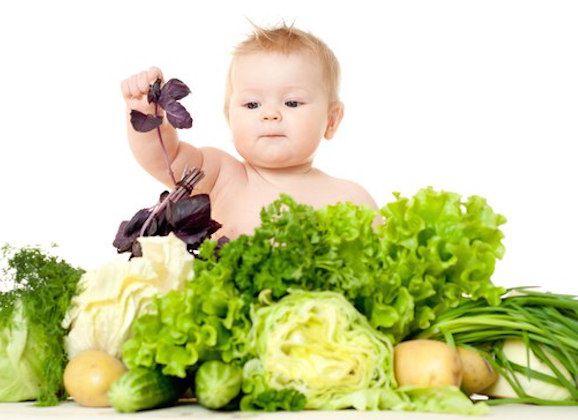 bebelus vegan