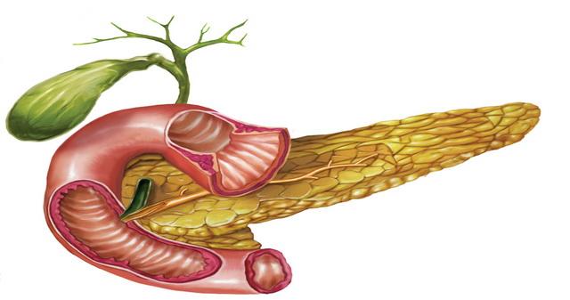 cum poti detoxifia pancreasul