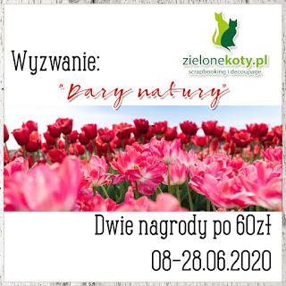 https://sklepzielonekoty.blogspot.com/2020/06/wyzwanie-dary-natury.html