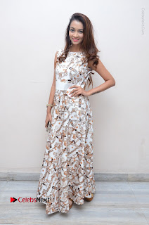 Telugu Actress Reshmi Thakur in Long Dress at Plus One ( 1) Audio Launch  0067.jpg