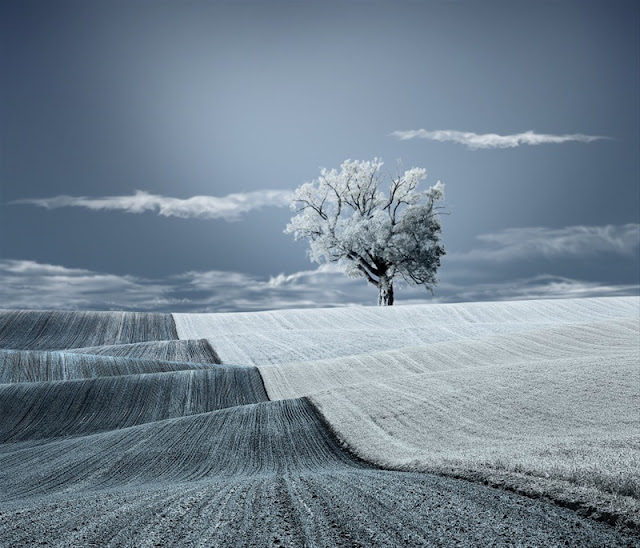 Landscape Photography 32 Fantastic Photos: Surreal . Fine Art . Conceptual Photography/ Arts