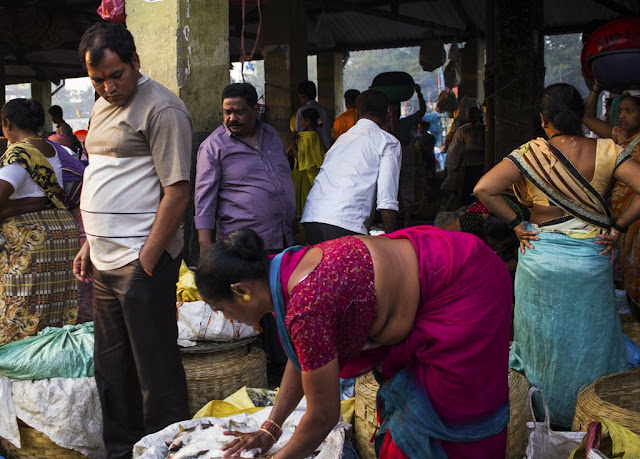 customers, sea food, fish, buyers, fish market, sassoon docks, mumbai, india,