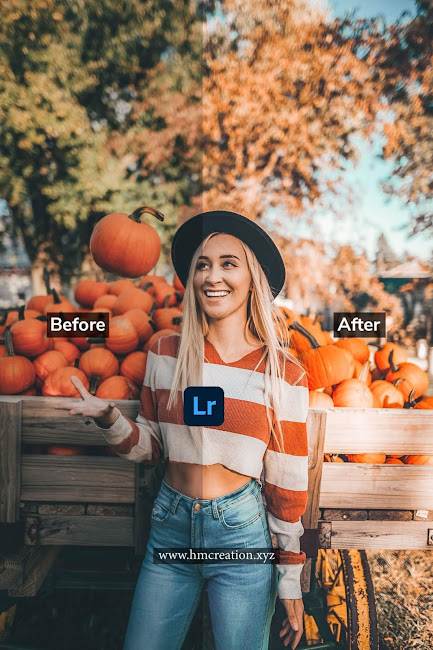 5 Halloween lightroom mobile presets free download