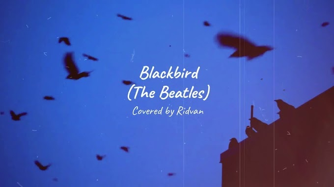 BLACKBIRD (The Beatles) Covered by Ridvan with Lyrics