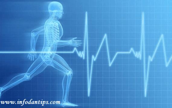 mengenal bagian sistem gerak pada tubuh manusia