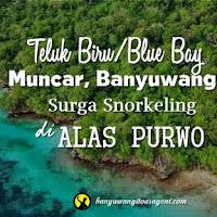 Teluk Biru Muncar Banyuwangi, Surga Snorkeling Alas Purwo