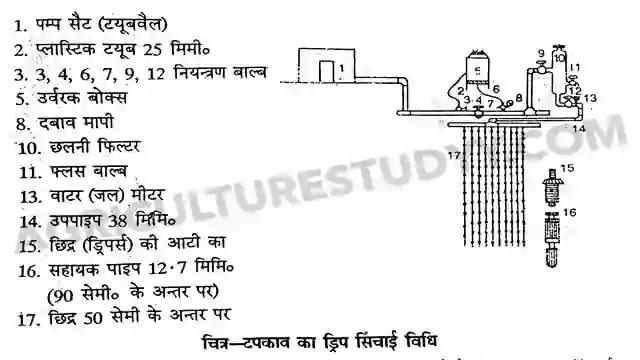 टपकेदार/बूंद बूंद या ड्रिप सिंचाई विधि ( Dripor Trickle Irrigation In Hindi )