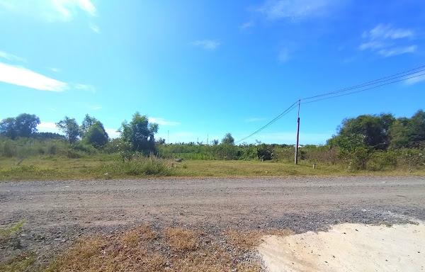 bán đất Hồ Tràm gần trường tiểu học quốc tế Hồ tràm, đi thẳng ra ra the garand Hồ Tràm strip 2km