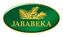 Lowongan Kerja PT Jababeka Tbk.