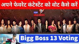 Movies Update How To Vote Bigg Boss Season 13 Bigg Boss
