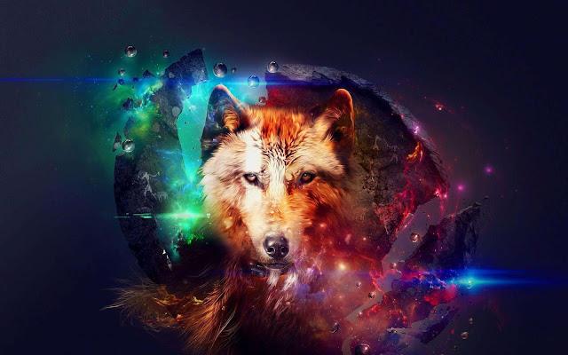 galaxy wolf wallpaper