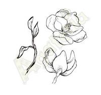 https://sklep.agateria.pl/en/flowers/724-magnolia-zestaw-1-5902557824168.html