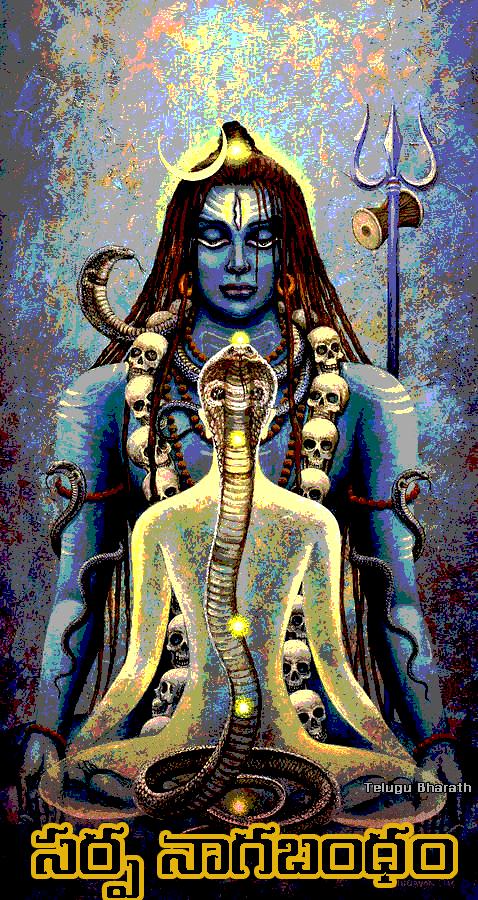 సర్ప నాగ బంధం - Sarpha Naaga Bhandam