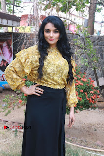 South Indian Actress Shweta Menon Stills at Inayathalam Audio Launch Stills  0013.jpg