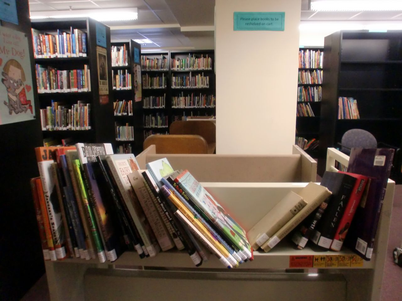 The (Mis)Adventures Of An International Student: Library