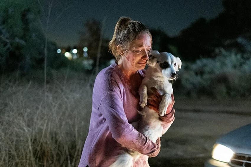Обзор двадцать первого эпизода сериала «Навстречу тьме» - «Хороший пёсик»
