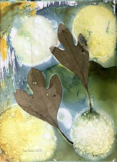 Wet cyanotype_Sue Reno_image 828