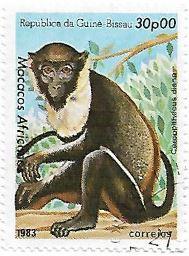 Selo Macaco-diana
