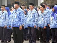 Pemerintah Siapkan Regulasi Jabatan yang Bisa Diisi oleh Pegawai Non-PNS