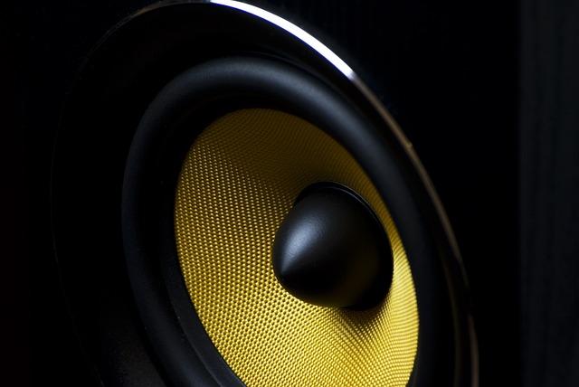 Ukuran dan Skema Box Speaker Double Terbaik di 2019