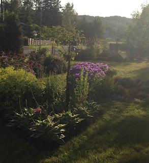 puutarha eteläosa