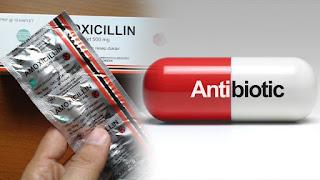 Mekanisme Kerja Antibiotik Info Lengkap