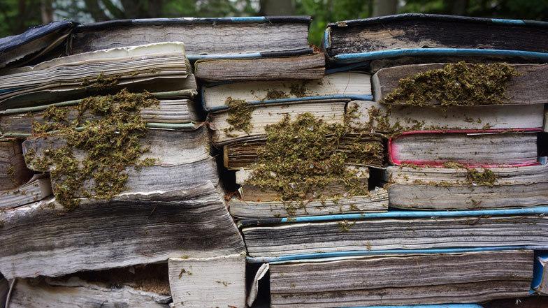 Livros que abandonei