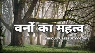 भारत में वनों का महत्व एवं उपयोग ( Importance of forest in hindi )