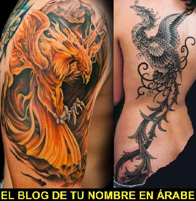 Fotos De Tatuajes De Ave Fenix