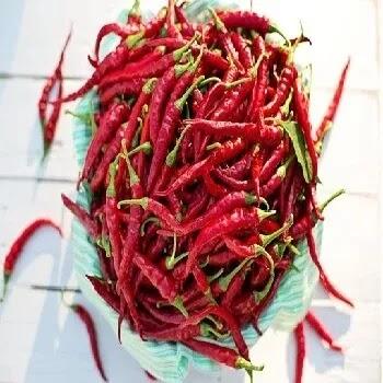 लाल मिरची, cayenne pepper vegetables name in Marathi