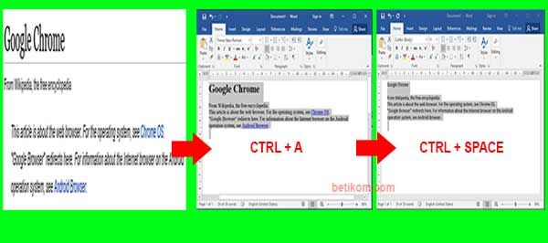 mengcopy teks web menggunakan alt