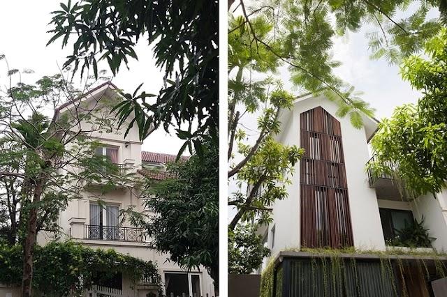 Biệt thự cũ thành ngôi nhà xanh