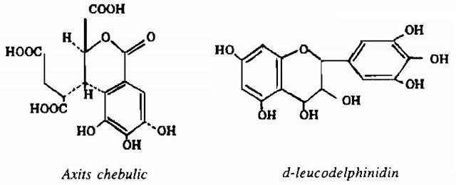 Thành phần hóa học Cây Me Rừng - Phyllantus emblica - Nguyên liệu làm thuốc Chữa Cảm Sốt